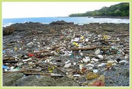 kinds of environmental pollution sustainable baby steps plastic water bottles and litter covering a polluted beach