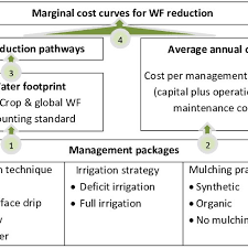 Flow Chart For Developing Marginal Cost Curves For Crop