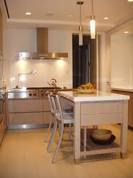 in a small manhattan kitchen