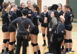 Young Bulldogs swept by Mercy in volleyball regional