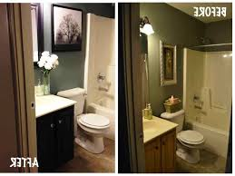 Small Bathroom No Window Design Trends And Uncategorized Picture ...