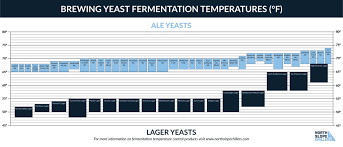 Fermentation Temperatures In The Brewing Process