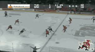 brendan perlini gets the roadrunners on the board in the third