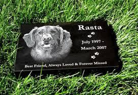 Burying My DogDog Burial Backyard