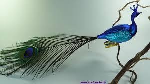 Glasvogel Pfau