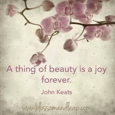John Keats Quotes A Thing Of Beauty Best of WwwfacebookblossomANDleapref=tntnmn A Thing Of