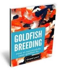 Goldfish Growth Rates Depend On Food Space And Environment
