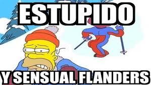 Resultado de imagen para memes de los simpsons