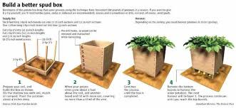 Small Picture How To Build The Best Potato Box Ever Mental Scoop