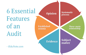 6 Essential Features Of An Audit Explained With A Chart