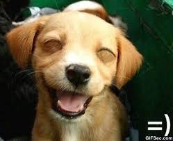 Smile_1.jpg via Relatably.com