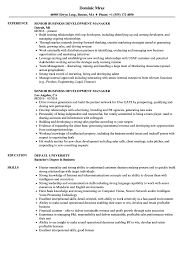 Business Development Manager Resume Senior Business Development Manager Resume Samples Velvet Jobs 42
