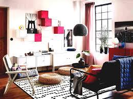 cheap apartment decor websites. Delighful Apartment Simple Rhtinydtnet Livingroom Cheap Furniture Ideas For Living Room  Apartment Affordable Modern U Ikea Ireland And Decor Websites T