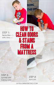 how to clean odors and stains from a mattress or carpet