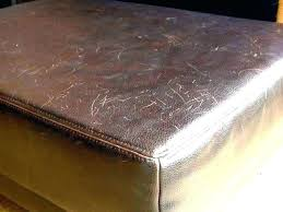 how to fix scratches on leather couch from dog scratches on leather couch scratches on leather