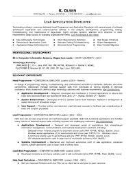 Programmer Analyst Resume Sample Programming Resume Examples Resume Samples 20