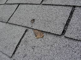 architectural shingles installation. Short Nails In Shingles. By Reuben Saltzman Roof Installation Architectural Shingles