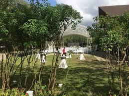 Garden wedding at Angel Fields |