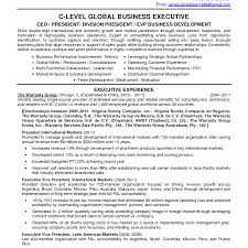 Call Center Consultant Resume Examples Sample Senior It Independent
