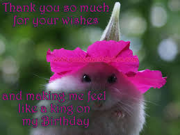 Beautiful Thank You Quotes For Birthday Wishes Best of Happy Bithday Birthday Thank You Beautiful Picture Quotes And