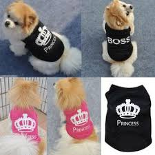 Cool Small Pet Dog Cat Shirt Breathable Vest Fashion Letter ... - Vova