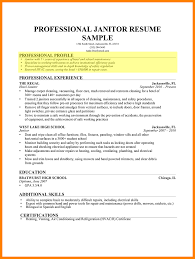 10+ professional summary resume examples | letter of apeal