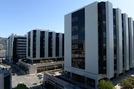 Cedars Sinai Organizational Chart Physician Leader Appointed Executive Vp Chief Operating Officer