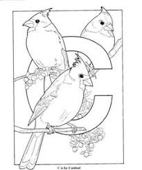 Small Picture Coloring Pages Cardinal Animals Birds free printable