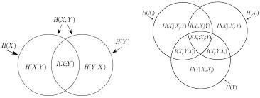 Mutual Information Venn Diagram Entropy Free Full Text Improvement Of The K Nn Entropy Estimator