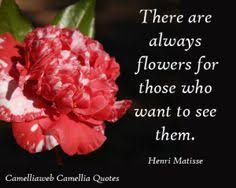 The Beauty Of Flowers Quotes Best of Flower Quotes About Beauty Quotesta
