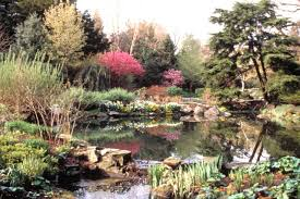 Small Picture How To Build Rock Garden Beautiful Home Design Fresh On How To