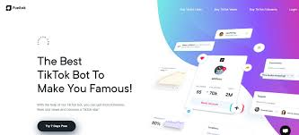 Best SMM Panel For TikTok Followers, Likes And Views 2021 ⋆ Social Tipster