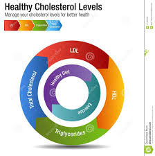 Total Cholesterol Chart Total Blood Cholesterol Hdl Ldl Triglycerides Chart Stock
