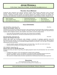 Good Sales Resume Examples Resume Templates