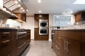 Chocolate Brown Cabinets Contemporary kitchen Aidan Design