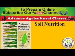 Soil Nutrition For Agricultural Field Officer Hindi English