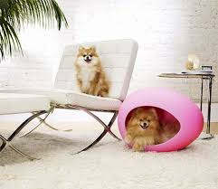 pei pods are stylish durable beds for the cool kitty and trend setting pup