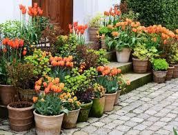 Container Garden Design Unique Design Inspiration