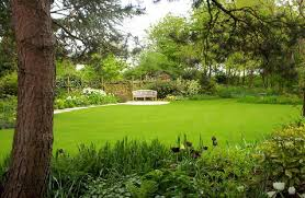 Small Picture Garden Design Courses sellabratehomestagingcom