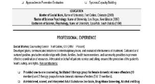 Resume 1000 Ideas About Sample Resume Templates On Pinterest