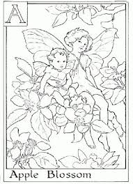 Small Picture 150 best Flower Fairies images on Pinterest Flower fairies