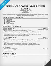 Insurance Coordinator Resume Unique Insurance Coordinator Sample Resumecompanion Resume Samples