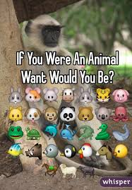 If You Were An Animal Want Would You Be