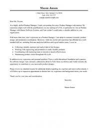 Bi Director Cover Letter Vb Dotnet Programmer Cover Letter