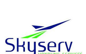 Image result for sky serv