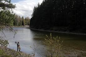 Yakima River Hatch Chart Cle Elum River Wa Emerald Water Anglers