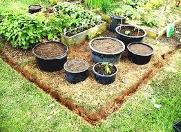 attractive indoor vegetable garden ideas the landscape design ...