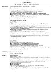 Operational Auditor Resume Samples Velvet Jobs