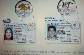 Need 3 Page Place Get Passport Wtf I Driver's License My Daves River To Renewed