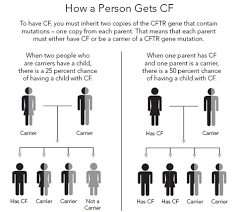 Cystic Fibrosis Inheritance Pattern Interesting CF Genetics The Basics CF Foundation